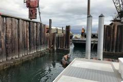 A-dock-wall-11-4-20-2