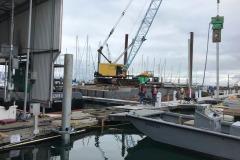 E-Dock-Near-covered-piling-October-9-2020